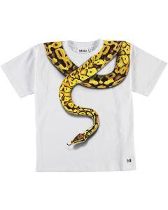 Shirt Rillo